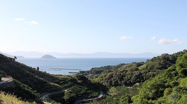 中島について_畑と海
